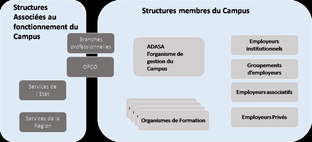 Schéma 4 Structure membres campus