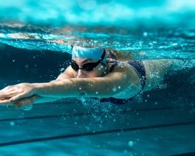 théorie natation staps